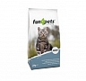 fun4pets_catfood_adult_cat_2kg_1_1388999761_210x19816.jpg